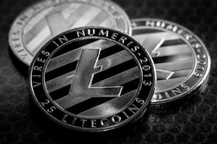 Litecoin, previsioni 2020: LTC resterà l'argento delle criptovalute?